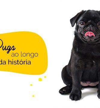 Pugs: curiosidades históricas