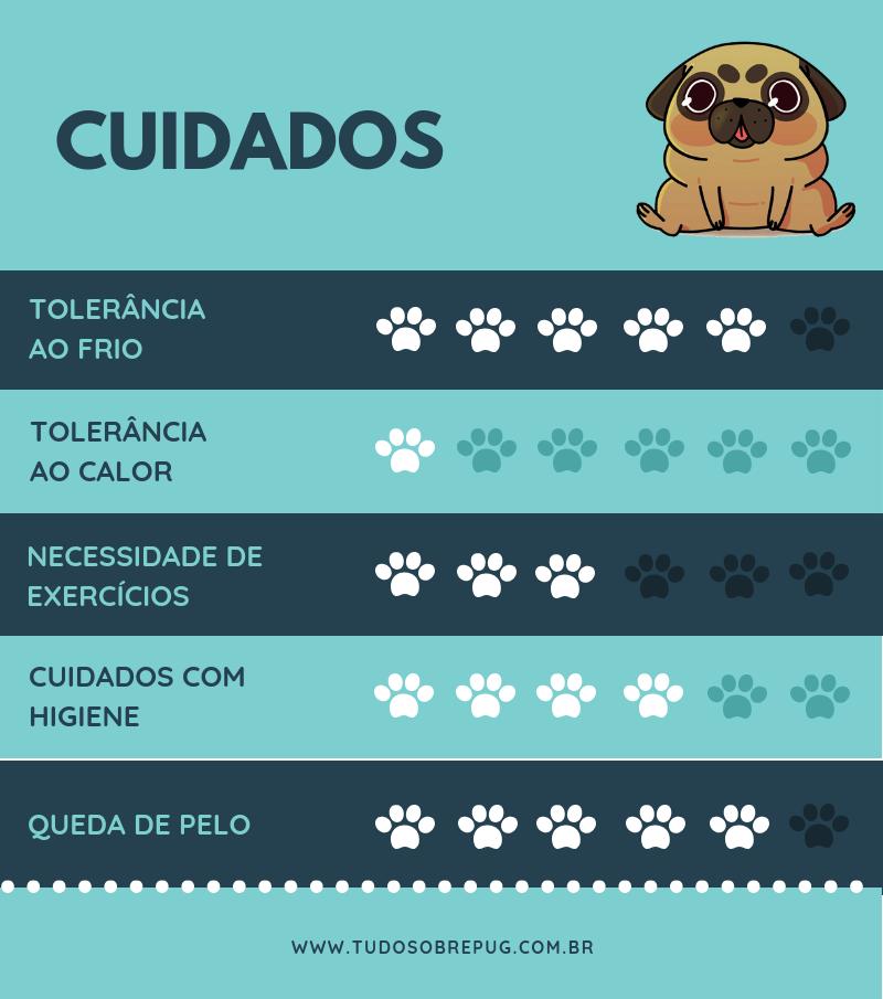 Infográfico: cuidado com pug