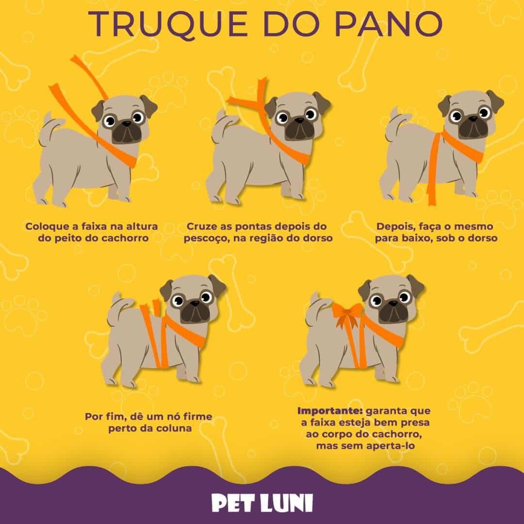 Truque do Pano para cães com medo de barulho de fogos de artificio