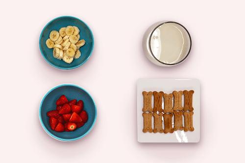 Tigelas com morango, banana, leite de arroz e biscoito para cachorro