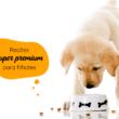Ração Super Premium para filhotes: o que é e por que escolhê-la?