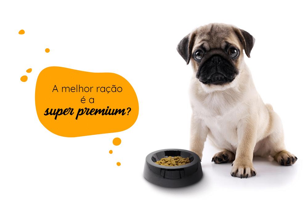 A melhor ração é a super premium? conheça a melhor ração
