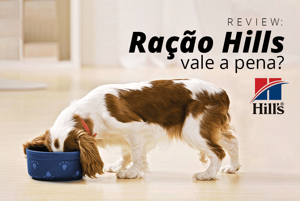 Review: Ração Hills vale a pena?