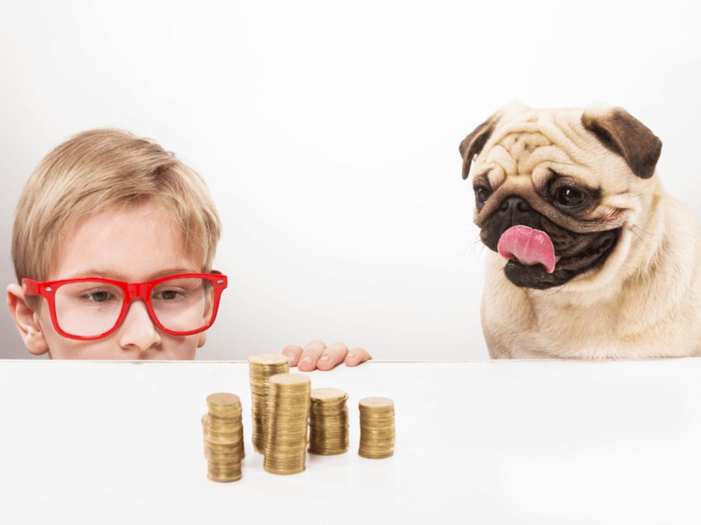 Pug com menino e pilha de moedas